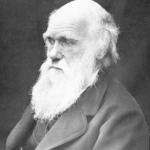 今日は何の日(11月24日)「進化の日」