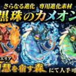 【黒猫のウィズ】 「黒珠のカメオン(カメオンSS+)」攻略情報!